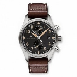 Replica IWC Pilot's watch Chronograph Collectors Edition IW387808
